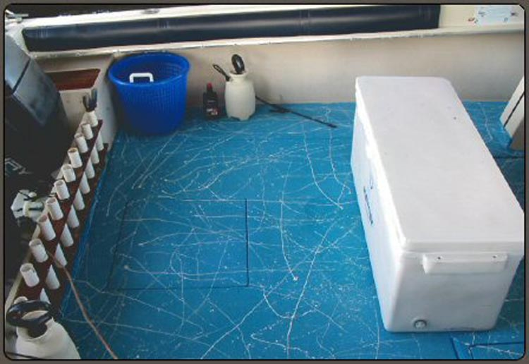 Custom Blue Speedliner with Graphics - Spray in Boat Liner on Boat Deck
